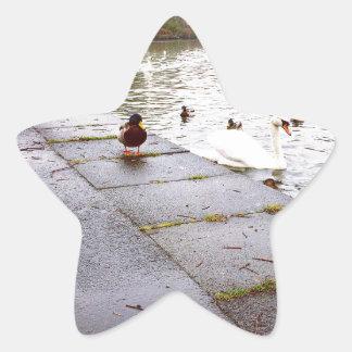 At the Loch Star Sticker
