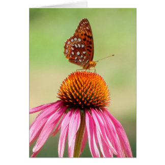 At The Top - Fritillary Butterfly Card