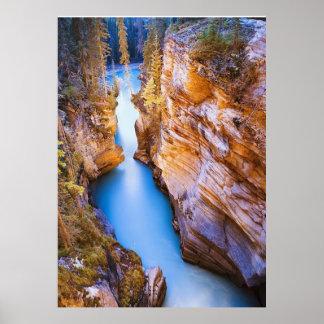 Athabasca Falls Canada Poster