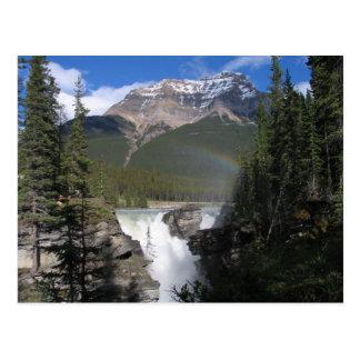 Athabasca Falls Postcard