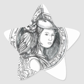 Athena with Owl on Shoulder Electronic Circuit Cir Star Sticker