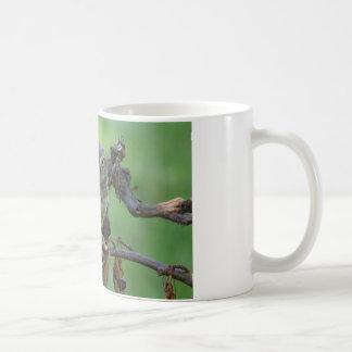 Athene noctua coffee mug