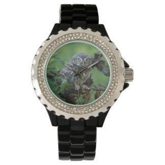 Athene noctua wrist watch