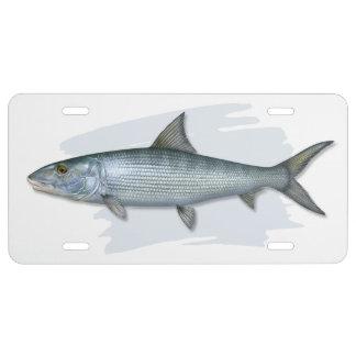 Atlantic Bonefish License Plate
