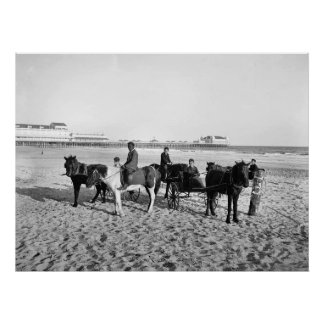 Atlantic City New Jersey Pony Rides Poster
