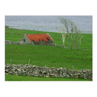 Atlantic Coast Pasture, Ireland Postcard