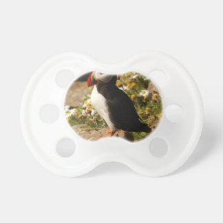 Atlantic Puffin Baby Pacifiers