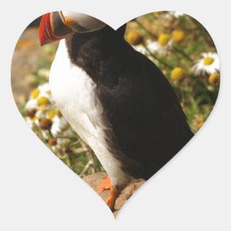 Atlantic Puffin Heart Sticker