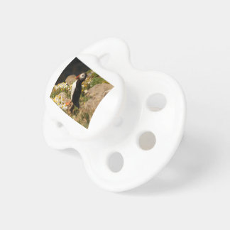 Atlantic Puffin Pacifier