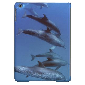Atlantic spotted dolphins. Bimini, Bahamas. iPad Air Cover
