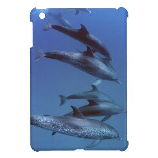 Atlantic spotted dolphins. Bimini, Bahamas. iPad Mini Cases