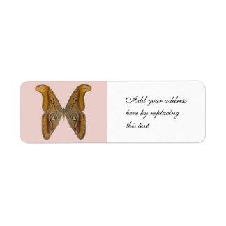 Atlas Moth Return Address Label