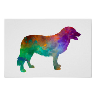 Atlas Mountain Dog in watercolor Poster