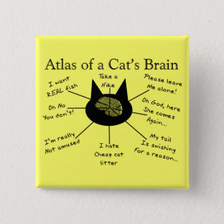 Atlas Of a Cat's Brain 2 Inch Square Button
