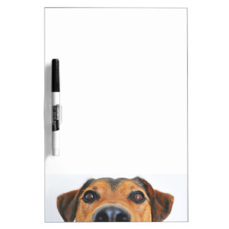 Attentive dog's nose dry erase board