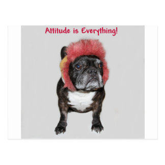 attitude is everything cute dog postcard