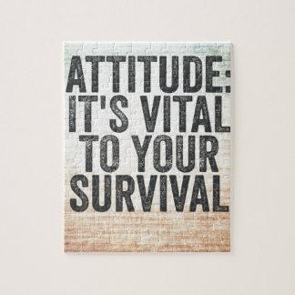 Attitude Puzzle