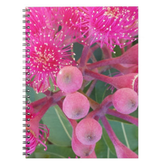 Attractive Australian Pink Gum Flower Design Notebooks