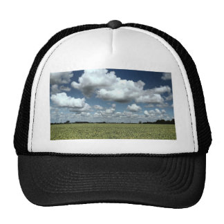 Au-dessus des champs nous allons casquette