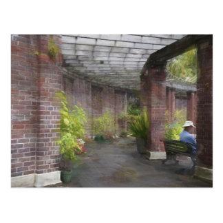 Auckland Domain, Winter Garden Postcard