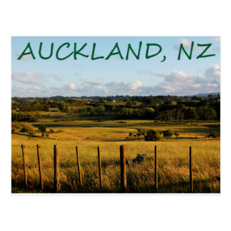 Auckland, New Zealand Post Card