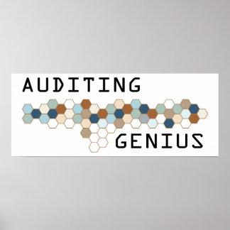Auditing Genius Posters