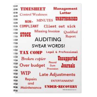 Auditing Swear Words Funny Auditor Joke Terms Notebooks