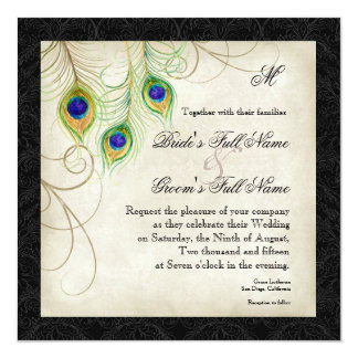 Audrey Jeanne Peacock Feather Black Damask Invite