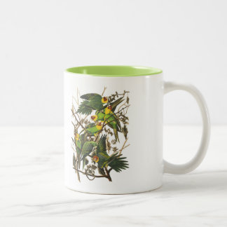 Audubon Bird Mug, Carolina Parrot, 15 oz. Two-Tone Two-Tone Coffee Mug