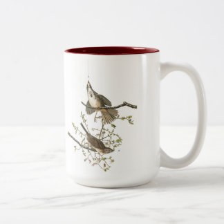 Audubon Bird Mug, Song Sparrow, 15 oz. Two-Tone Two-Tone Coffee Mug