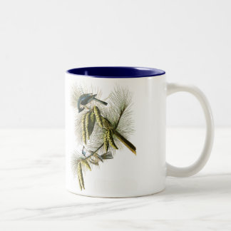 Audubon Bird Mug, Tufted Titmouse, 15 oz. Two-Tone Coffee Mug