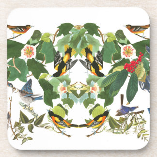 Audubon Birds Wildlife Animals Floral Coaster