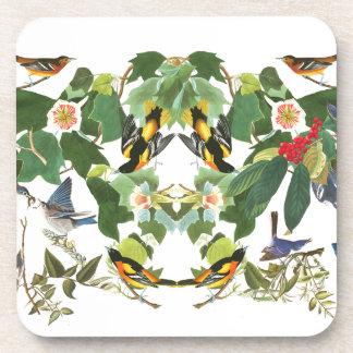 Audubon Birds Wildlife Animals Floral Coaster