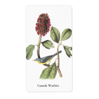 Audubon Canada Warbler Shipping Label