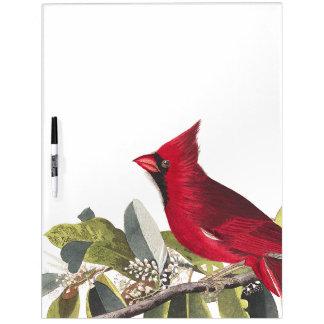 Audubon Cardinal Bird Wildlife Dry Erase Board