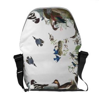 Audubon Collage of Birds Wildlife Messenger Bag