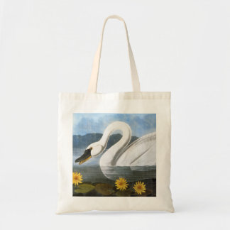 Audubon: Common Swan Tote Bag