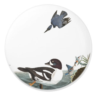Audubon Duck Bluebird Birds Wildlife Animal Knob