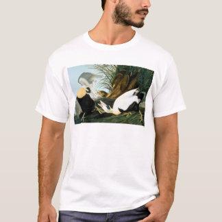 Audubon: Eider Duck T-Shirt