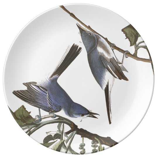 Audubon Flycatcher Birds Wildlife Porcelain Plate