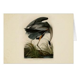 Audubon Great Blue Heron Birds Card