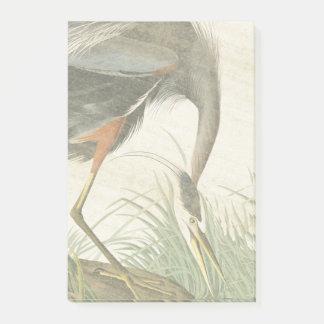 Audubon Heron Bird Wildlife Post It Notes
