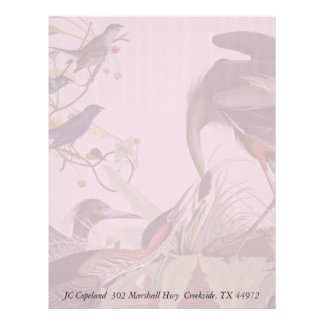 Audubon Heron Birds Collage Stationery Letterhead