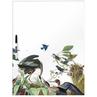 Audubon Heron Birds Wildlife Animal Erase Board