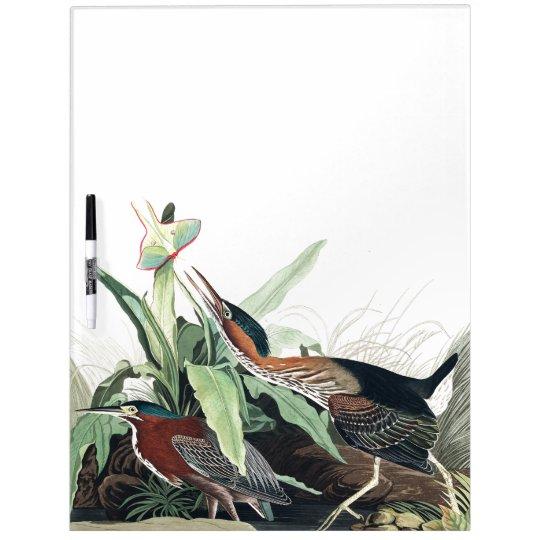 Audubon Heron Birds Wildlife Animal Erase Board Dry-Erase Board