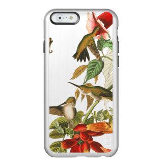Audubon Hummingbird Birds Flower iPhone 6 Case