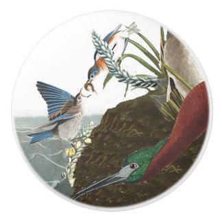 Audubon Ibis Bluebirds Birds Wildlife Floral Knob