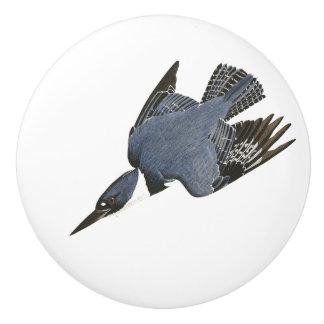 Audubon Kingfisher Bird Wildlife Floral Knob