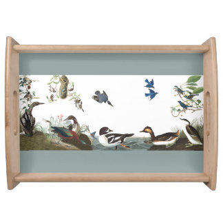 Audubon Kingfisher Bird Wildlife Serving Tray