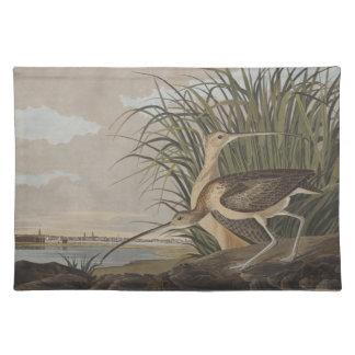 Audubon Long-Billed Curlew Sandpiper Bird Place Mats